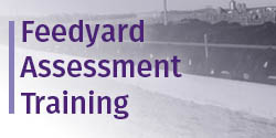 Feedyard Assessment