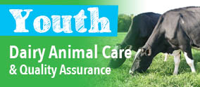 Youth Dairy Animal Care and Quality Assurance